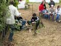 hresw2dflimg_pfila2006_063