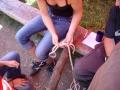 hresw2dflimg_sola2005_083